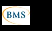 BMS Informatika